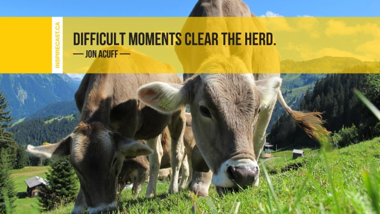 Difficult moments clear the herd. ~ Jon Acuff