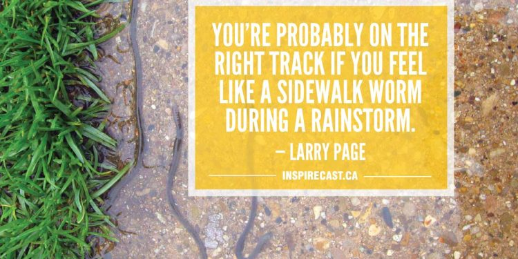 You're probably on the right track if you feel like a sidewalk worm during a rainstorm. — Larry Page