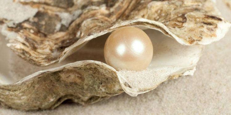 No Grit - No Pearl