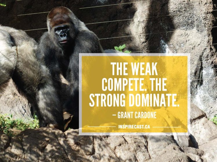 The weak compete. The strong dominate. — Grant Cardone