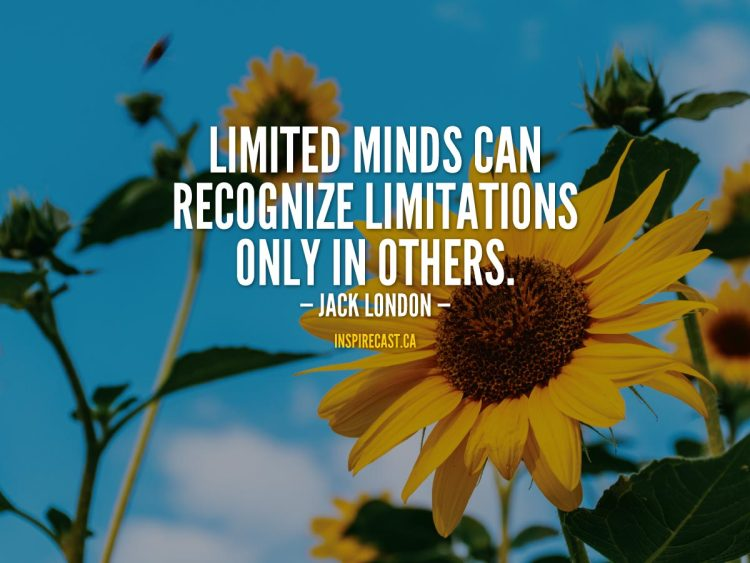 Limited minds can recognize limitations only in others. - Jack London