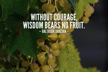 Without courage, wisdom bears no fruit. - Baltasar Gracian